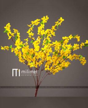Hoa vàng cánh dài